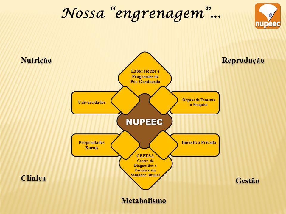Nossa engrenagem ... Nutrição Reprodução NUPEEC Clínica Gestão