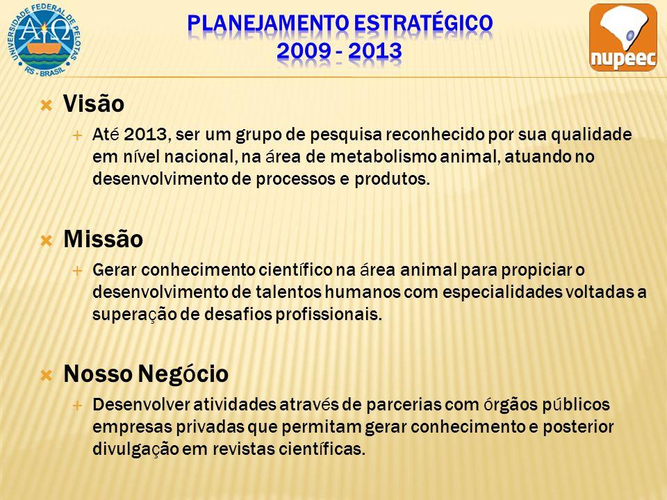 Planejamento estratégico 2009 - 2013