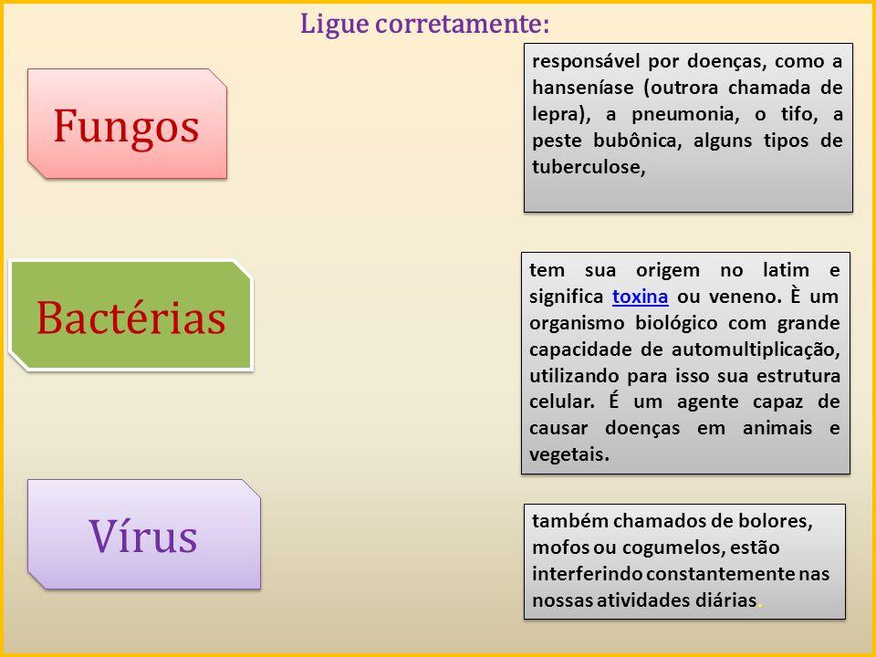 Fungos Bactérias Vírus Ligue corretamente: