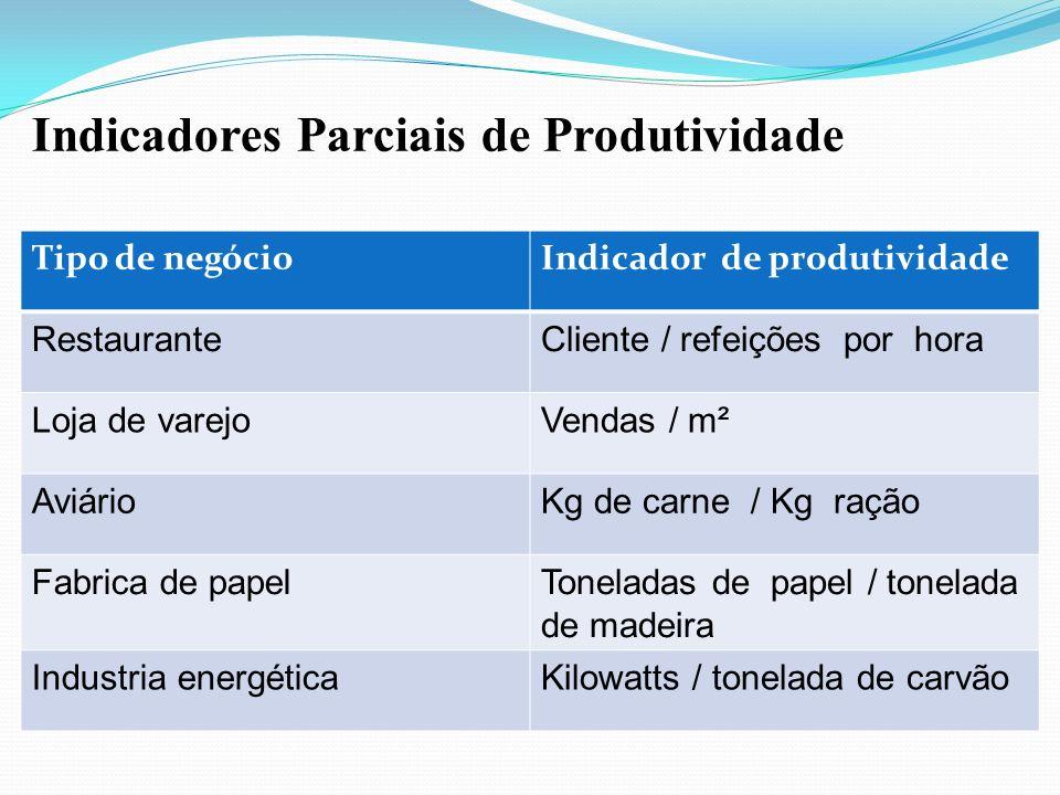 Indicadores Parciais de Produtividade