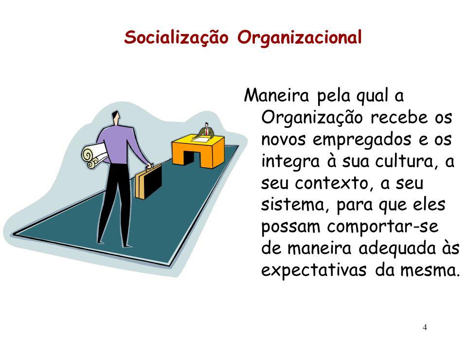 Socialização Organizacional