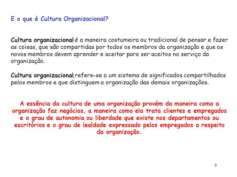 E o que é Cultura Organizacional