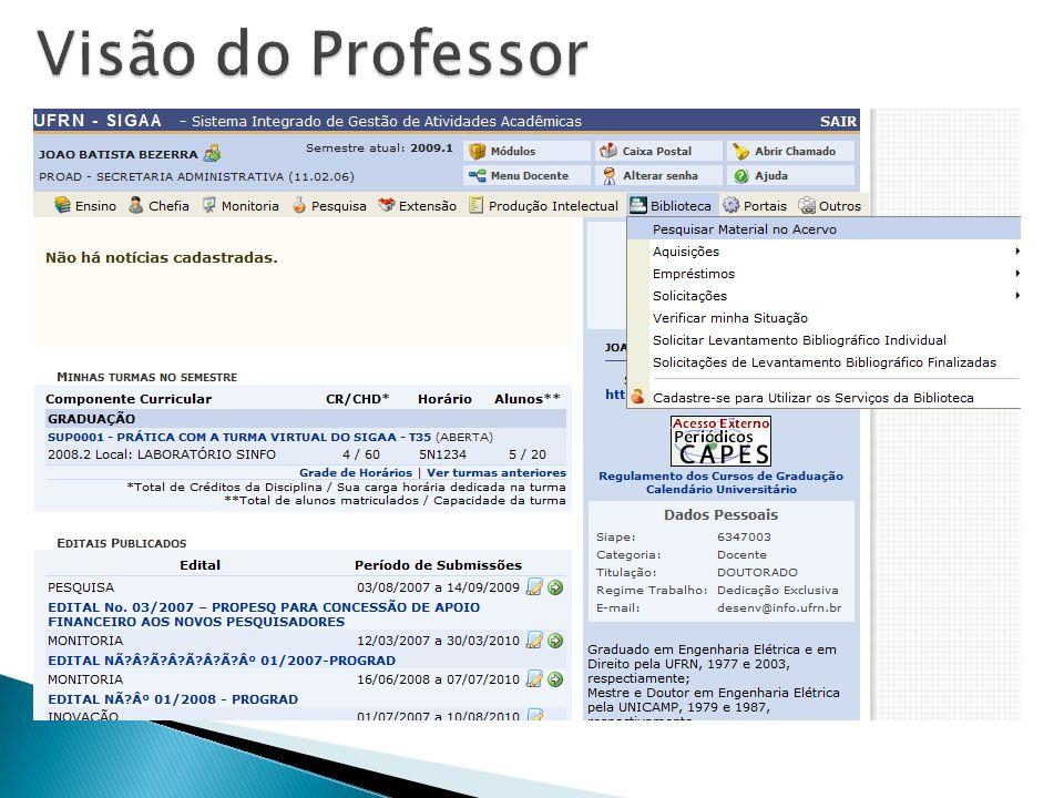 Visão do Professor