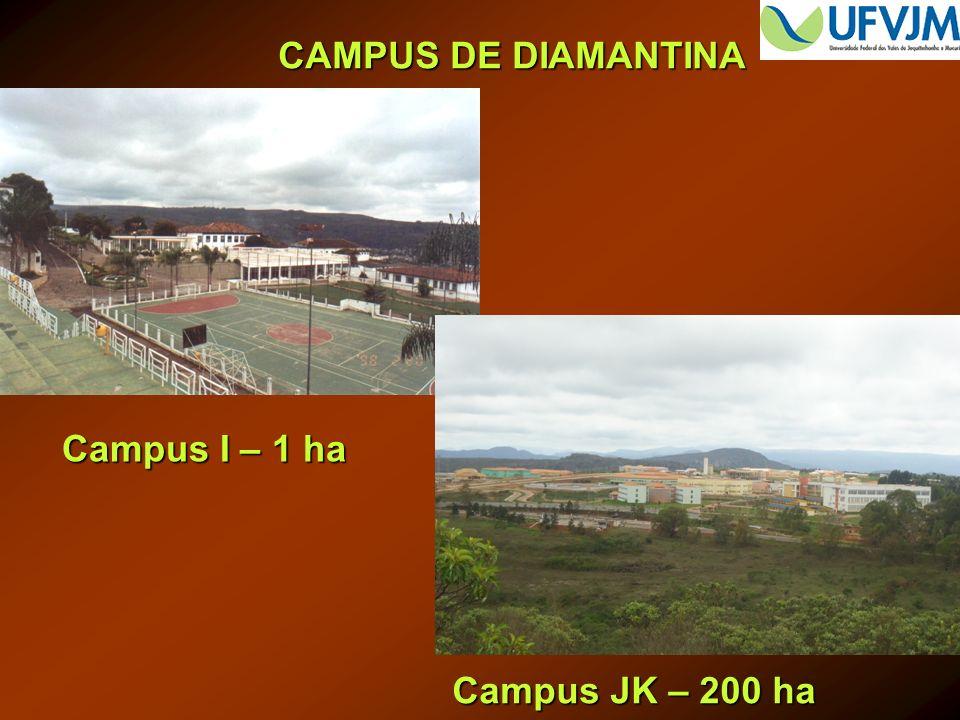 CAMPUS DE DIAMANTINA Campus I – 1 ha Campus JK – 200 ha