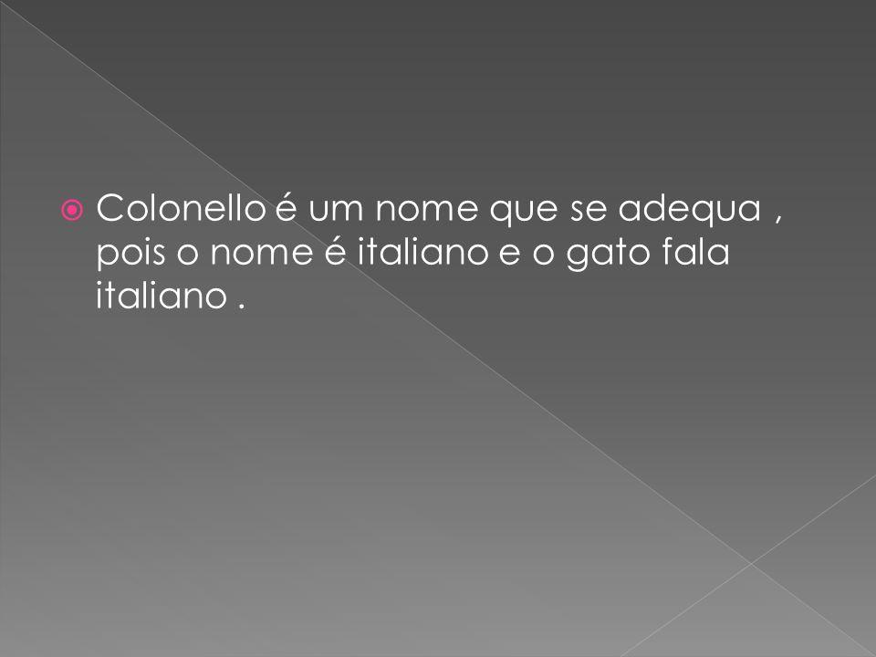 Colonello é um nome que se adequa , pois o nome é italiano e o gato fala italiano .