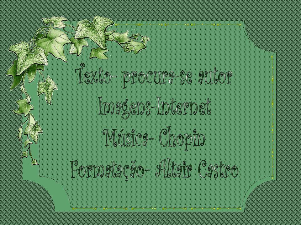 Texto- procura-se autor Imagens-Internet Música- Chopin