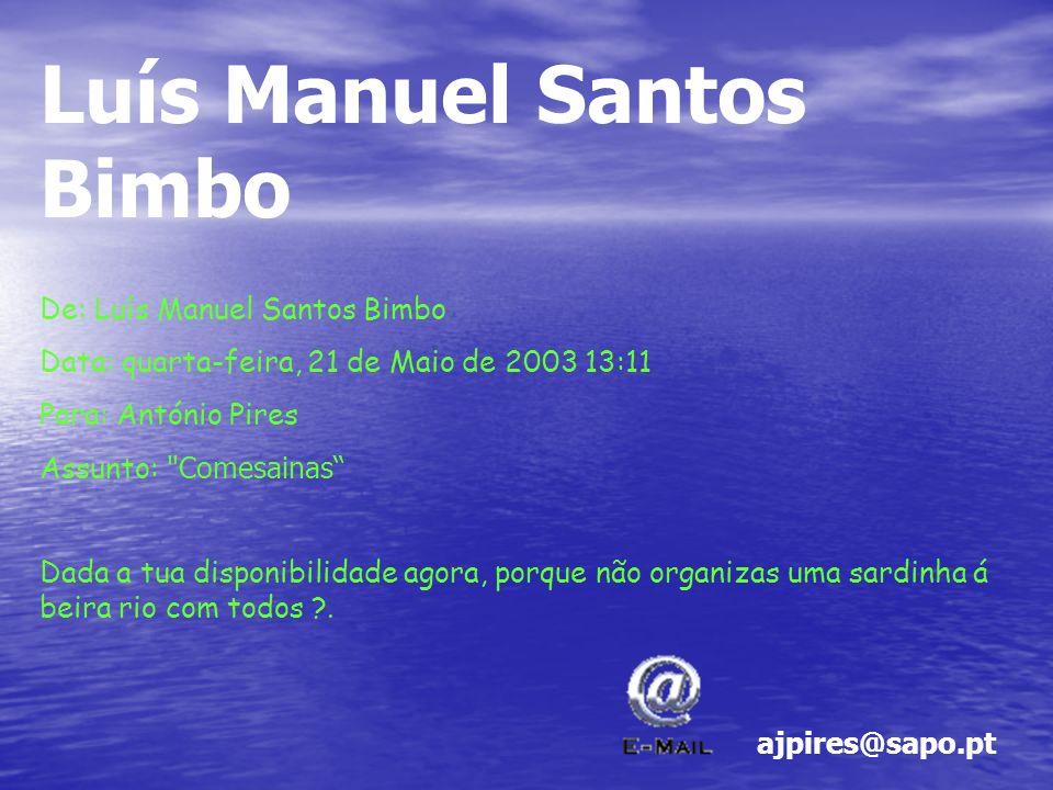 Luís Manuel Santos Bimbo