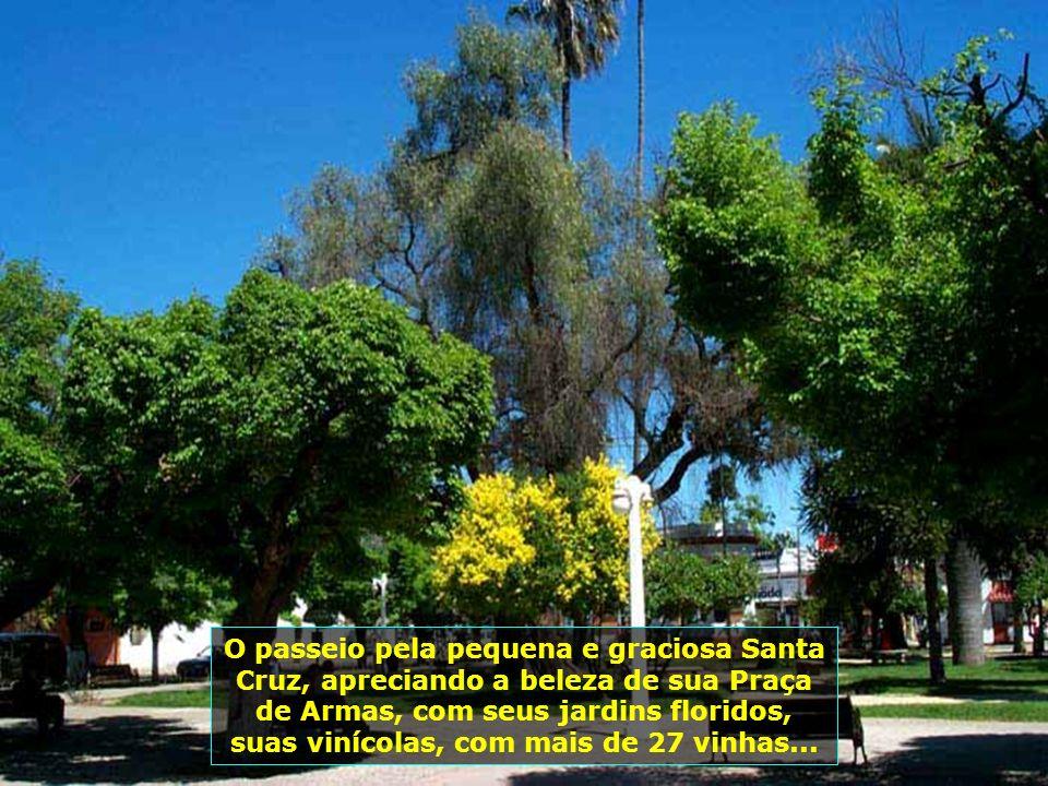 P0008820 - CHILE-SANTA CRUZ - PRAÇA DE ARMAS