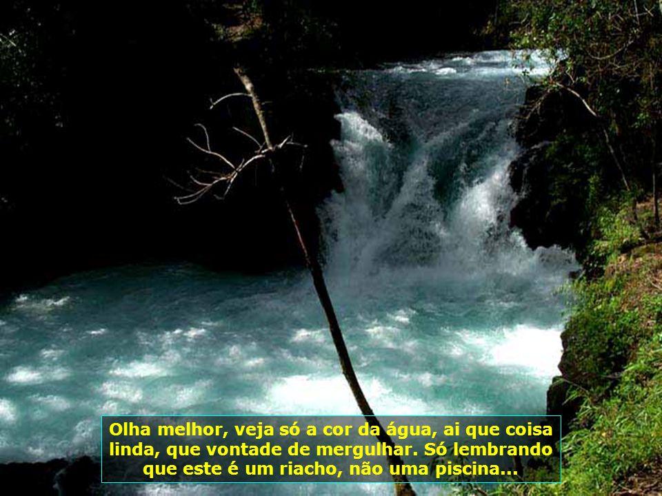 P0009006 - CHILE-PUCON - RIO LIMPO