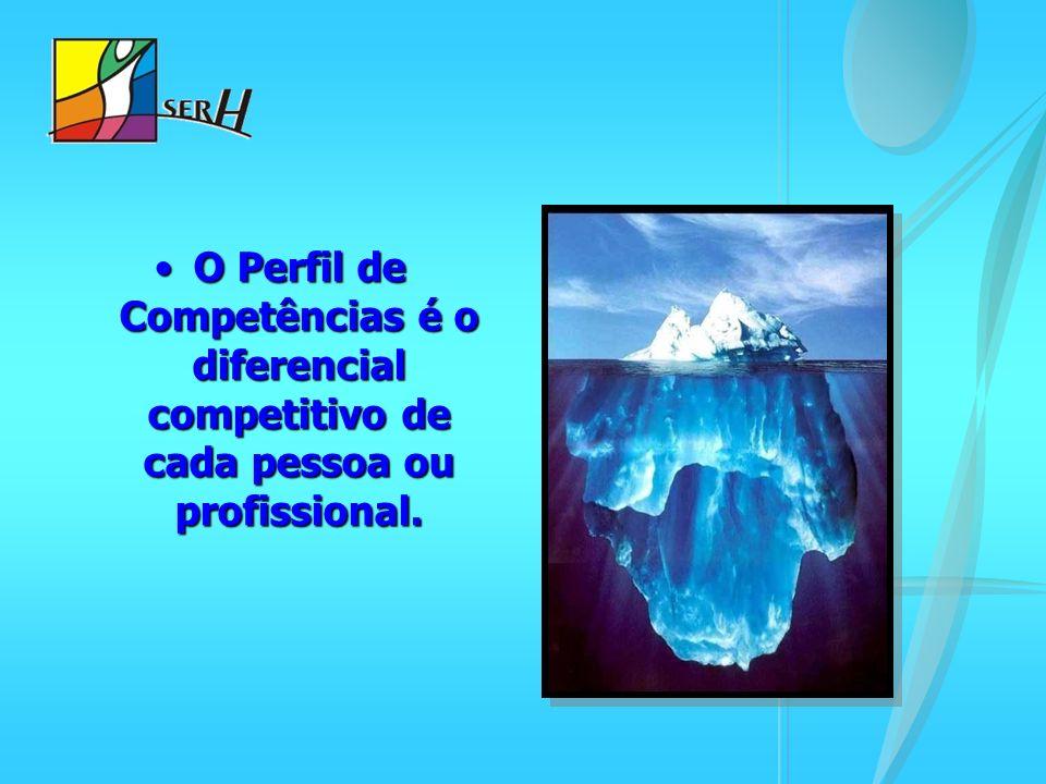 O Perfil de Competências é o diferencial competitivo de cada pessoa ou profissional.