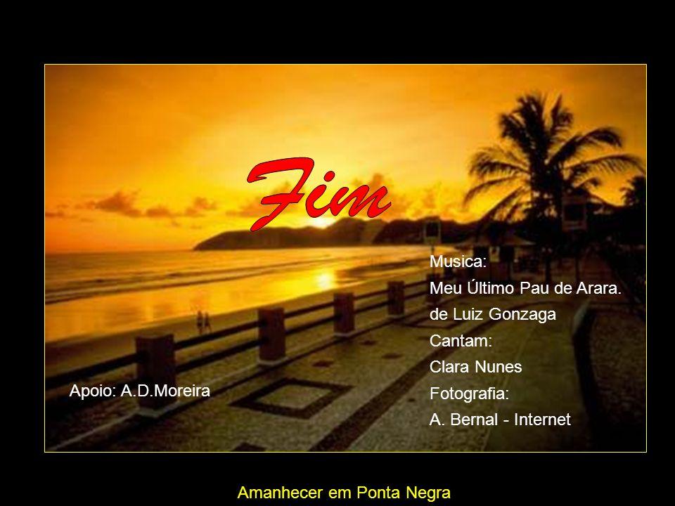 Fim Musica: Meu Último Pau de Arara. de Luiz Gonzaga Cantam:
