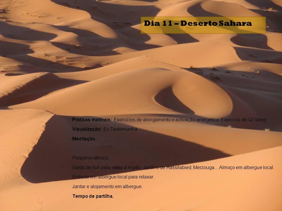 Dia 11 – Deserto Sahara Práticas matinais: Exercícios de alongamento e activação energética. Exercício de Qi Gong.