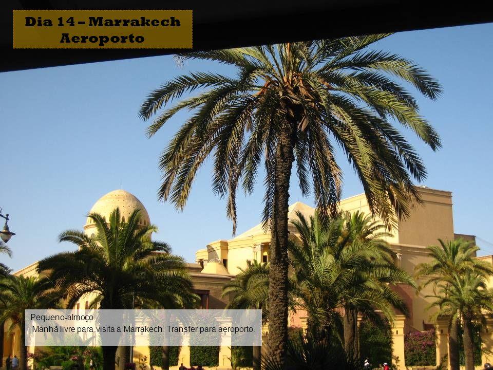 Dia 14 – Marrakech Aeroporto