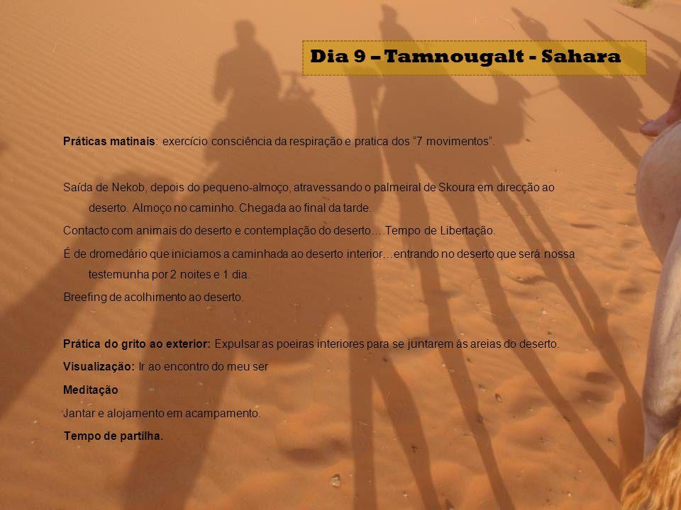 Dia 9 – Tamnougalt - Sahara