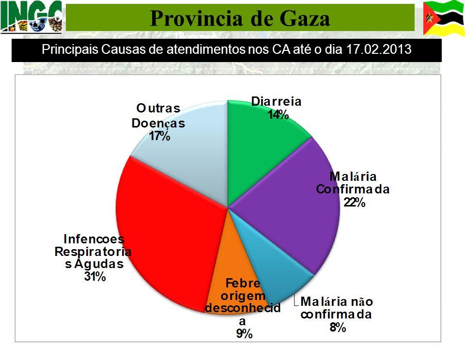 Principais Causas de atendimentos nos CA até o dia 17.02.2013