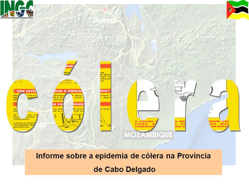 Informe sobre a epidemia de cólera na Província