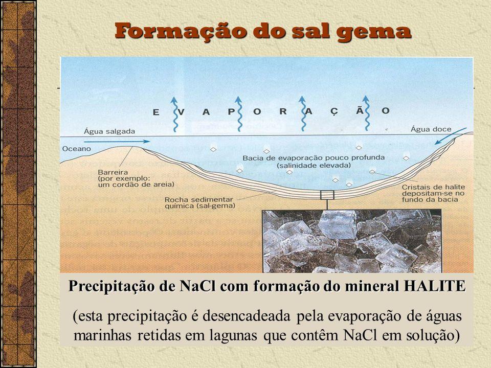 Precipitação de NaCl com formação do mineral HALITE