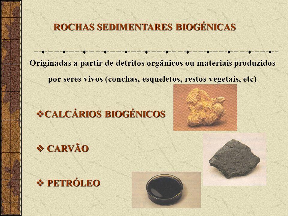 ROCHAS SEDIMENTARES BIOGÉNICAS