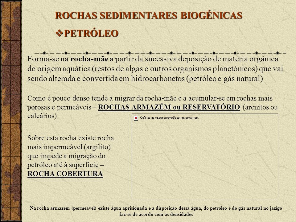 ROCHAS SEDIMENTARES BIOGÉNICAS PETRÓLEO