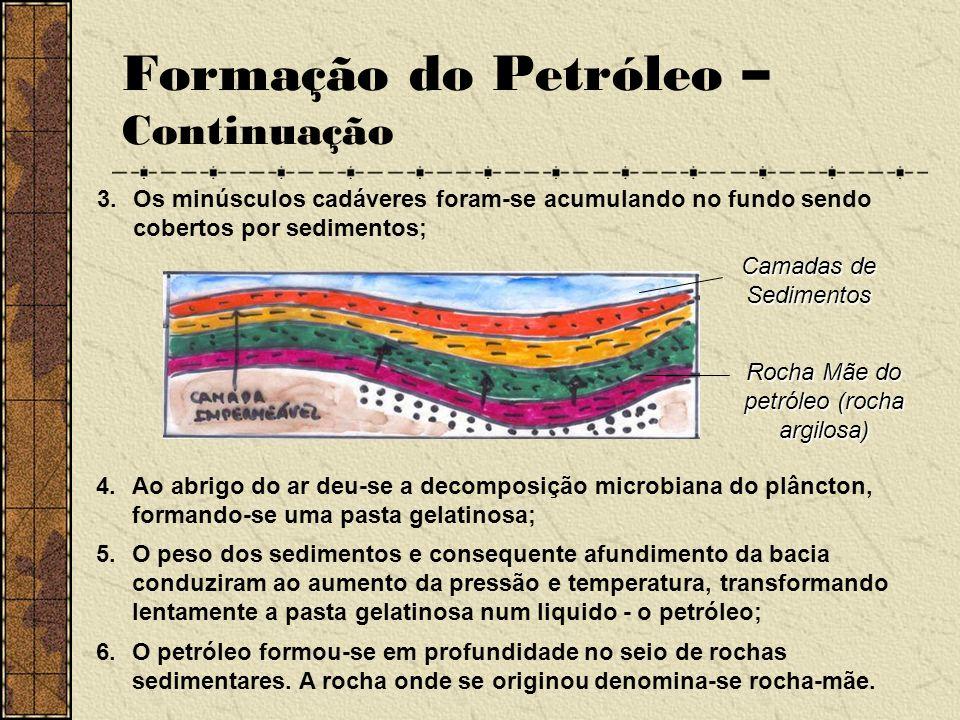 Formação do Petróleo – Continuação
