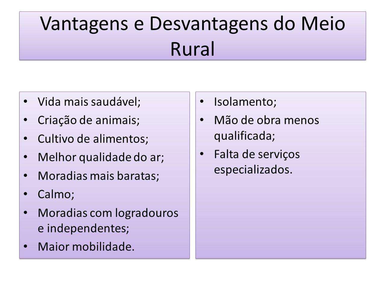 Vantagens e Desvantagens do Meio Rural