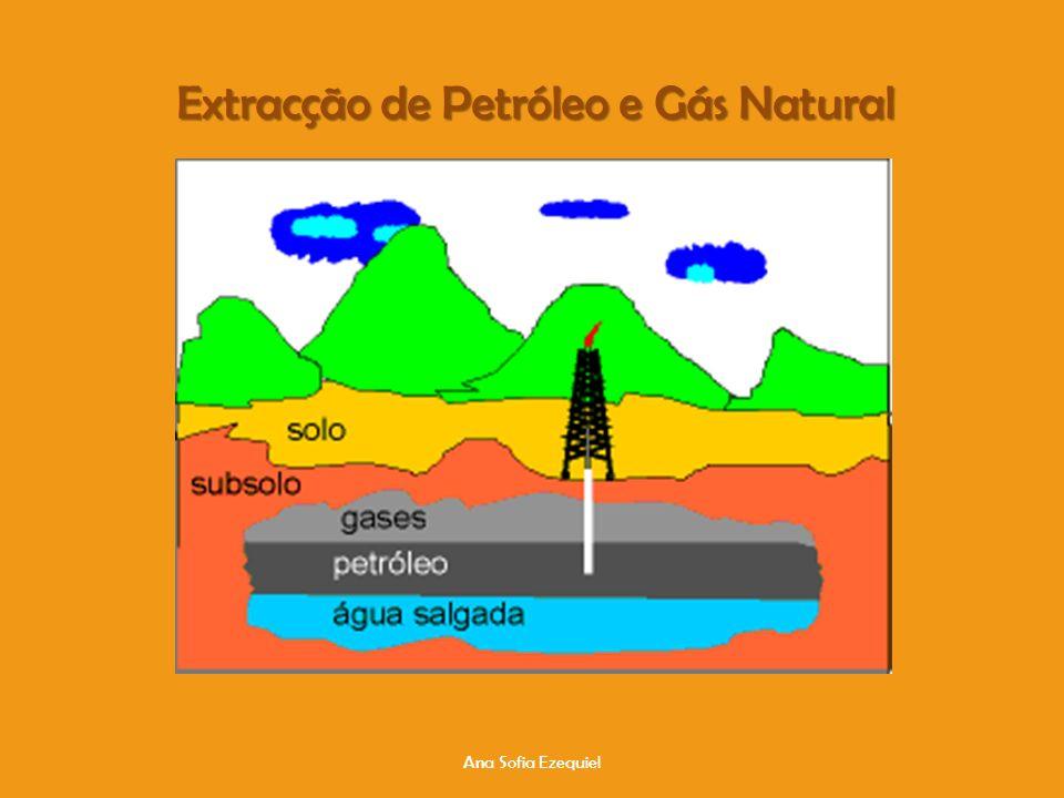 Extracção de Petróleo e Gás Natural