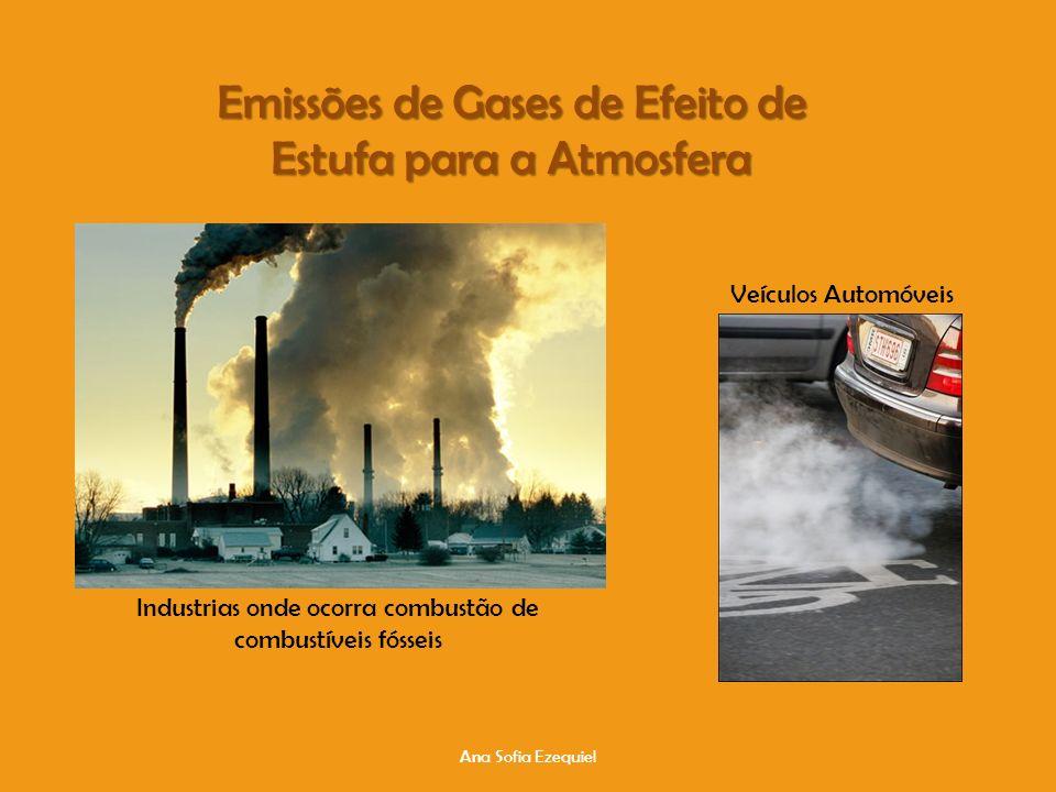 Emissões de Gases de Efeito de Estufa para a Atmosfera