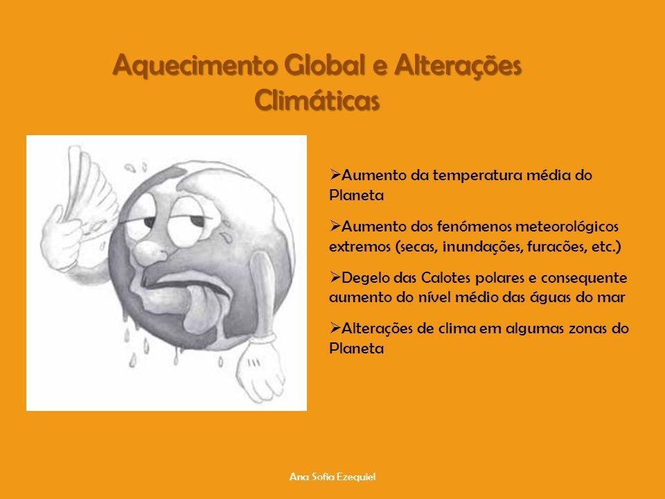 Aquecimento Global e Alterações Climáticas