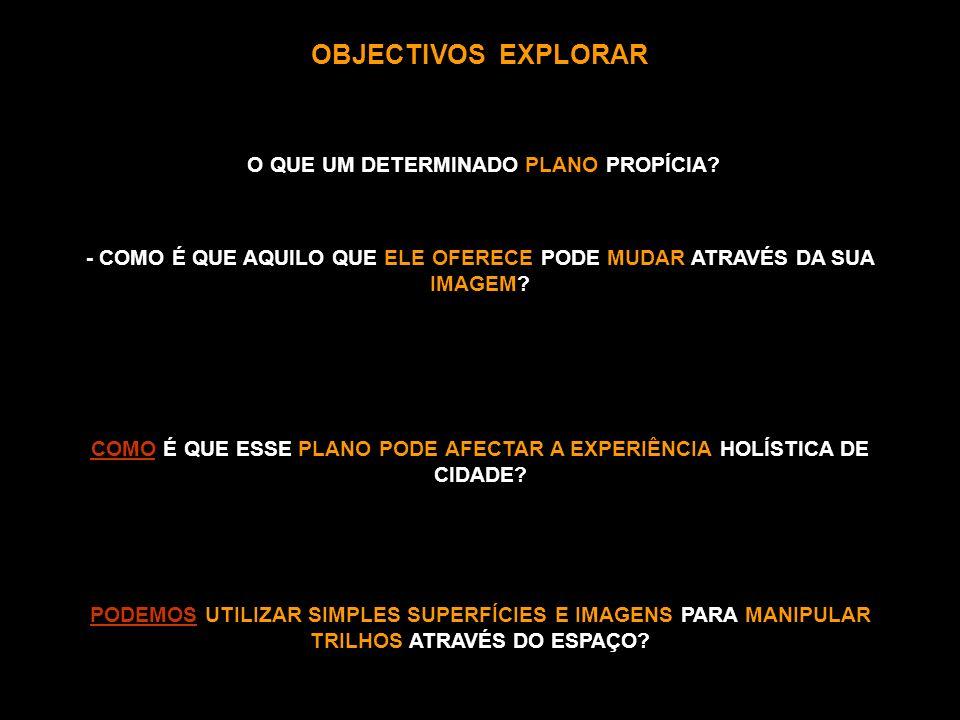 OBJECTIVOS EXPLORAR O QUE UM DETERMINADO PLANO PROPÍCIA