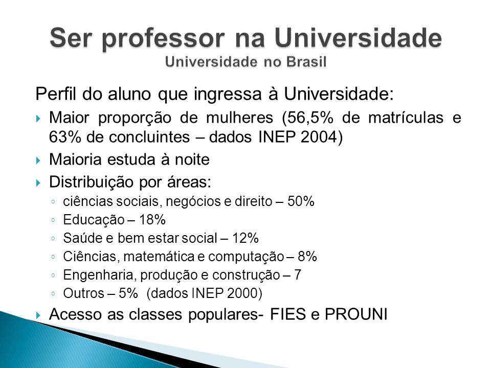 Ser professor na Universidade Universidade no Brasil