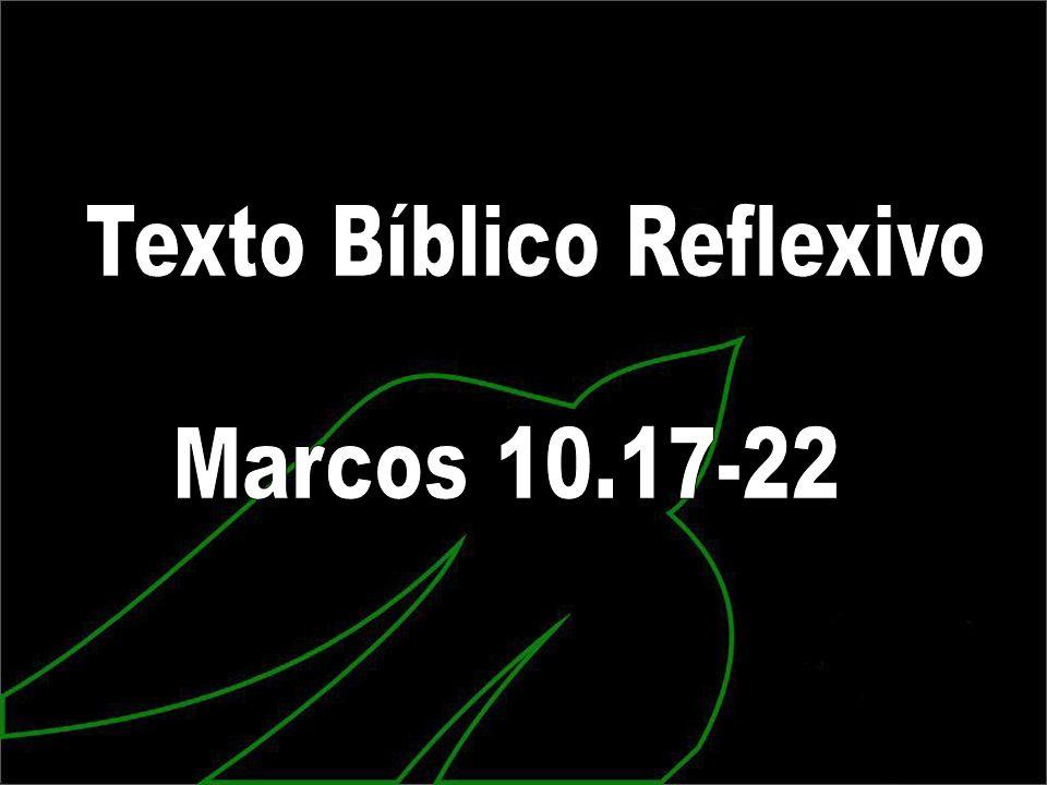 Texto Bíblico Reflexivo