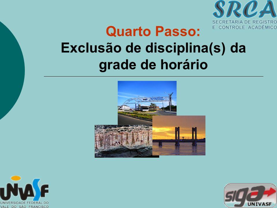 Quarto Passo: Exclusão de disciplina(s) da grade de horário