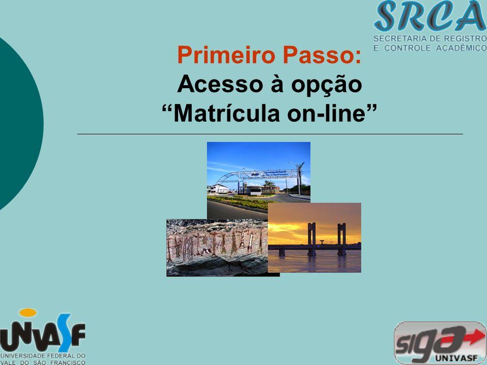 Primeiro Passo: Acesso à opção Matrícula on-line