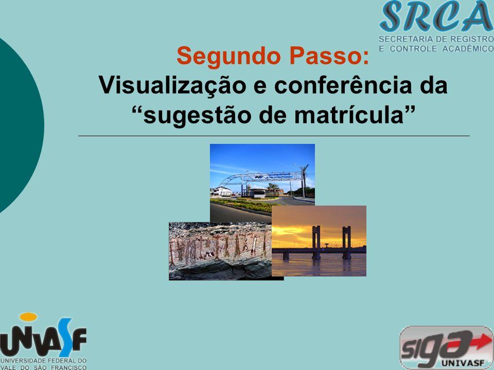 Segundo Passo: Visualização e conferência da sugestão de matrícula
