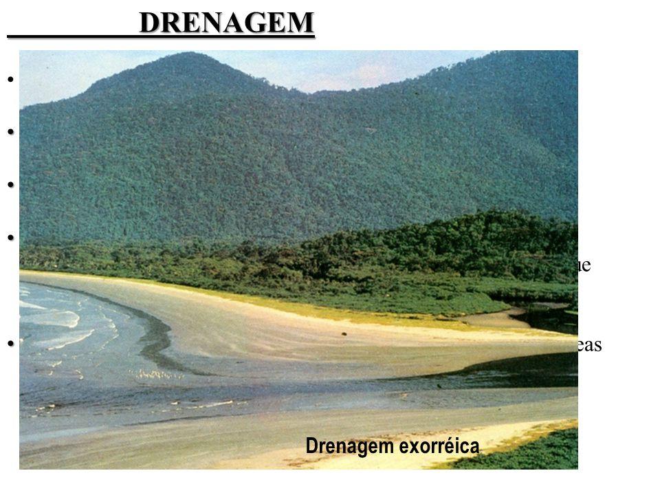 DRENAGEM O curso do rio define seu tipo de drenagem: