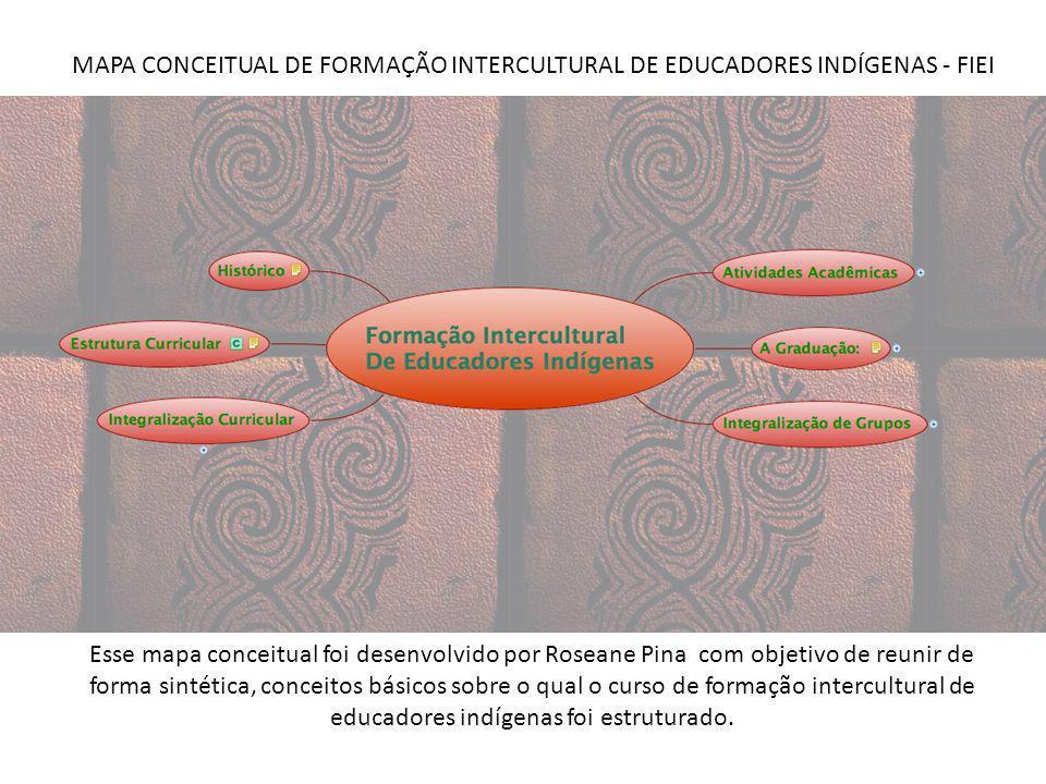 MAPA CONCEITUAL DE FORMAÇÃO INTERCULTURAL DE EDUCADORES INDÍGENAS - FIEI