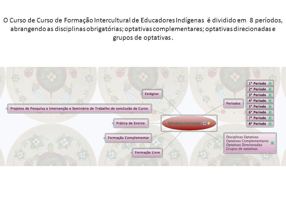O Curso de Curso de Formação Intercultural de Educadores Indígenas é dividido em 8 períodos, abrangendo as disciplinas obrigatórias; optativas complementares; optativas direcionadas e grupos de optativas .