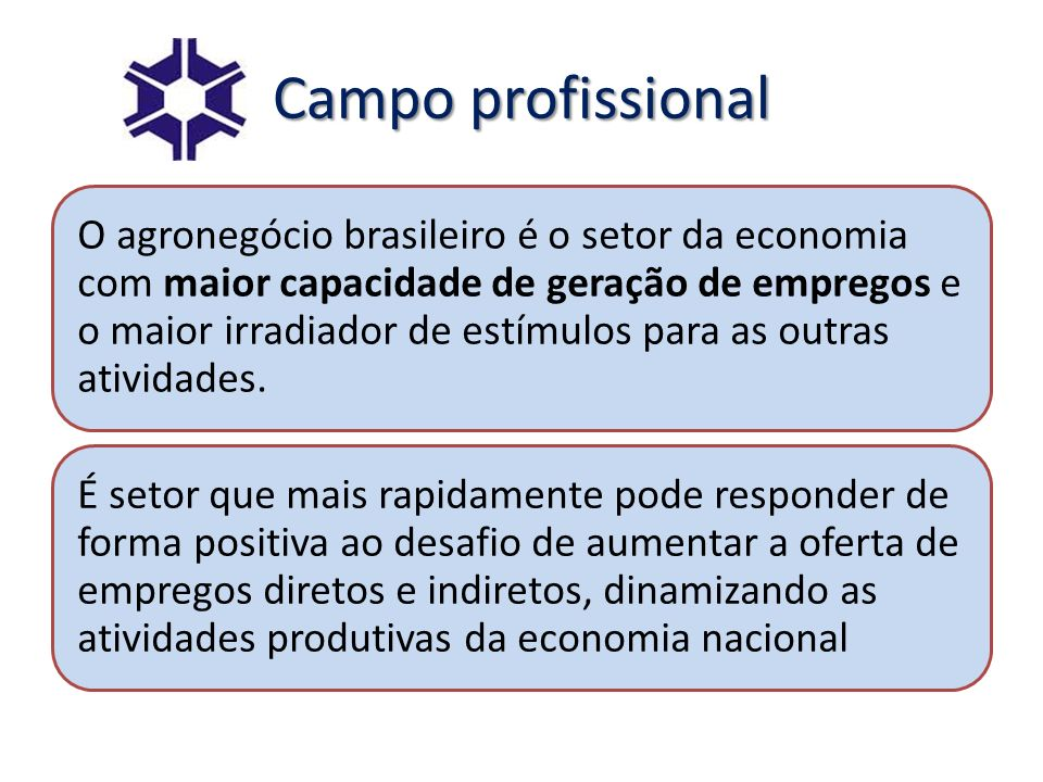 Campo profissional
