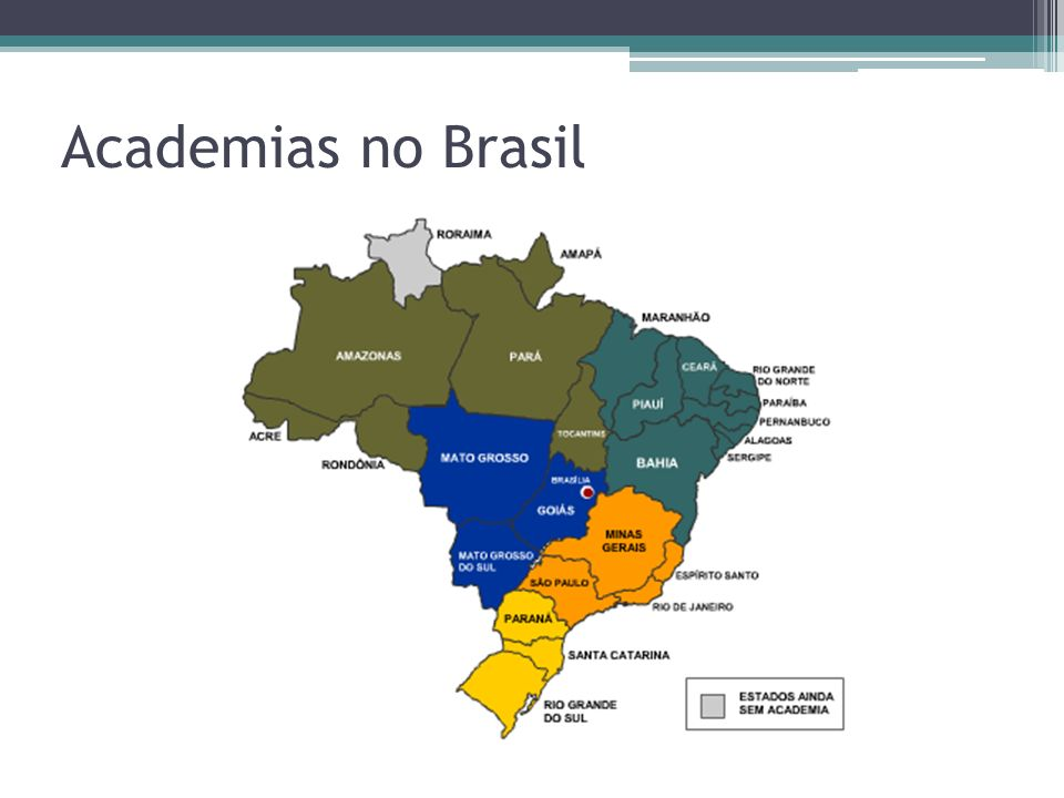 Academias no Brasil