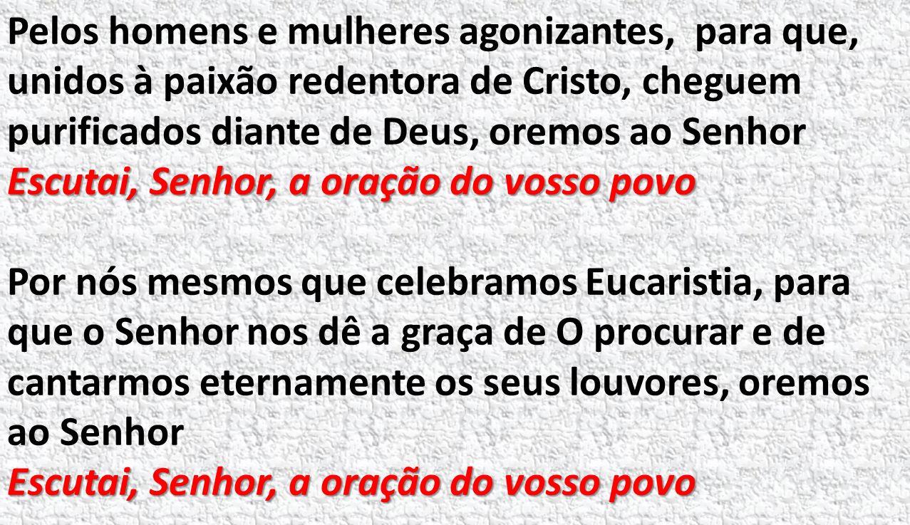 Pelos homens e mulheres agonizantes, para que, unidos à paixão redentora de Cristo, cheguem purificados diante de Deus, oremos ao Senhor