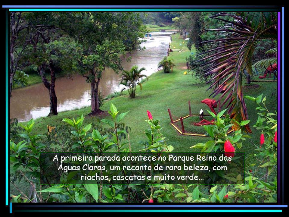 A primeira parada acontece no Parque Reino das Águas Claras, um recanto de rara beleza, com riachos, cascatas e muito verde…
