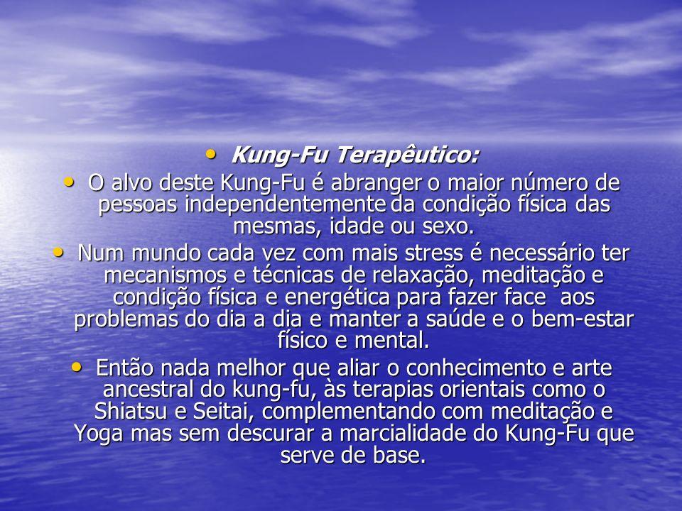 Kung-Fu Terapêutico: O alvo deste Kung-Fu é abranger o maior número de pessoas independentemente da condição física das mesmas, idade ou sexo.