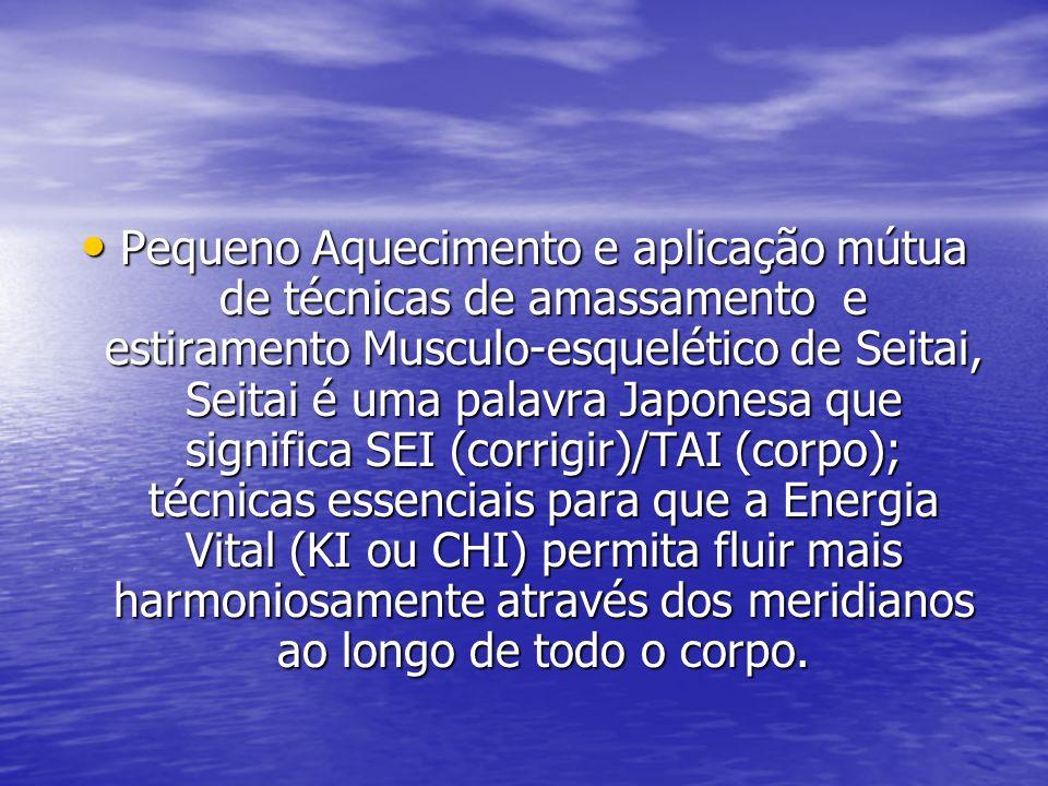 Pequeno Aquecimento e aplicação mútua de técnicas de amassamento e estiramento Musculo-esquelético de Seitai, Seitai é uma palavra Japonesa que significa SEI (corrigir)/TAI (corpo); técnicas essenciais para que a Energia Vital (KI ou CHI) permita fluir mais harmoniosamente através dos meridianos ao longo de todo o corpo.