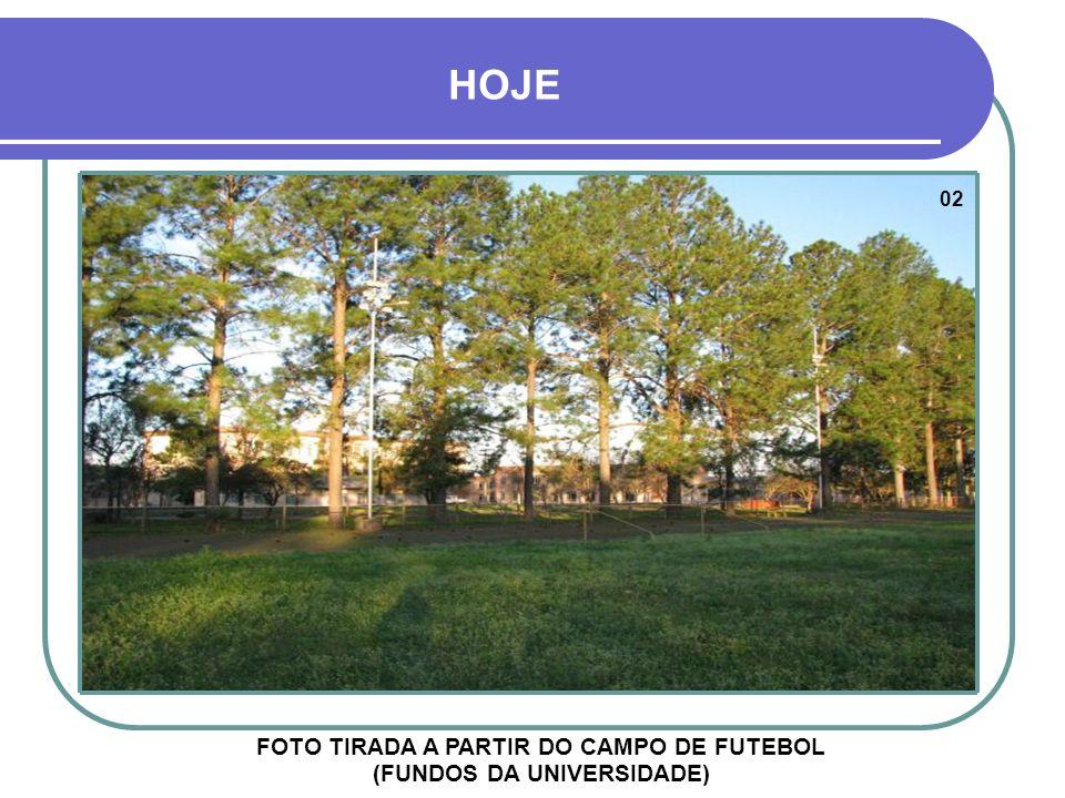 FOTO TIRADA A PARTIR DO CAMPO DE FUTEBOL (FUNDOS DA UNIVERSIDADE)