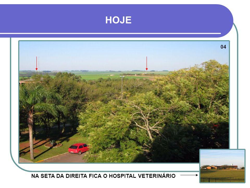 NA SETA DA DIREITA FICA O HOSPITAL VETERINÁRIO