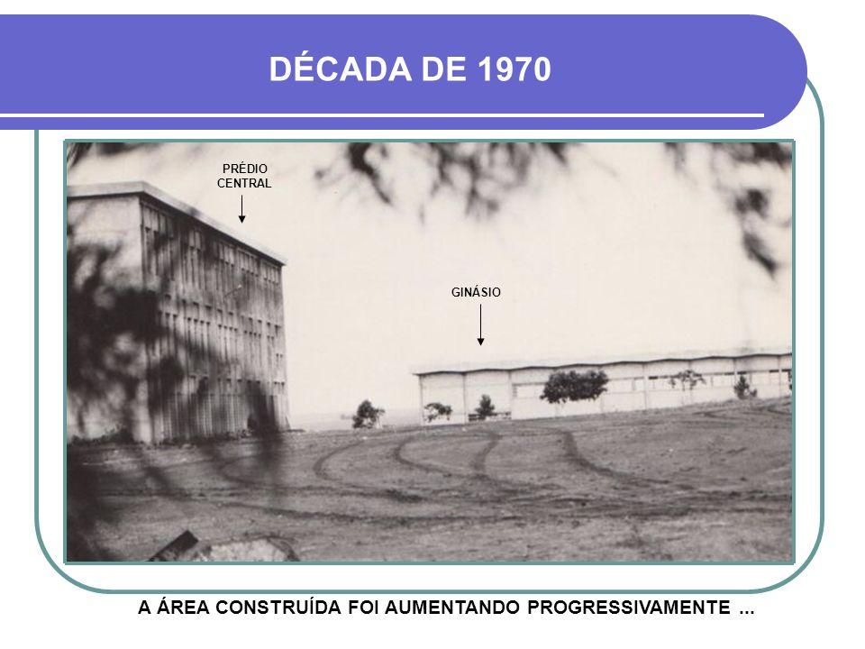 A ÁREA CONSTRUÍDA FOI AUMENTANDO PROGRESSIVAMENTE ...