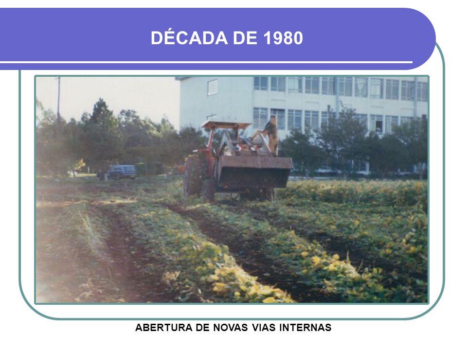 ABERTURA DE NOVAS VIAS INTERNAS