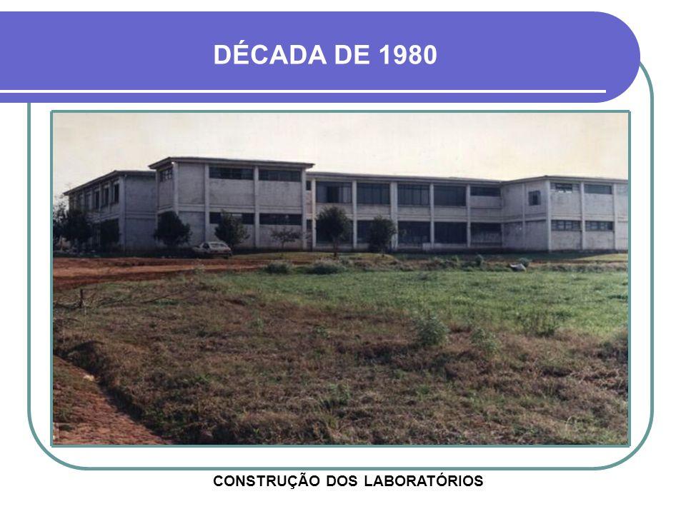 CONSTRUÇÃO DOS LABORATÓRIOS