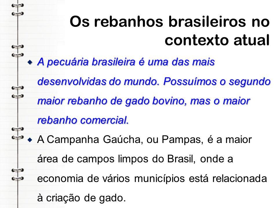 Os rebanhos brasileiros no contexto atual
