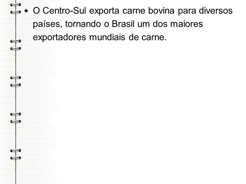 O Centro-Sul exporta carne bovina para diversos países, tornando o Brasil um dos maiores exportadores mundiais de carne.